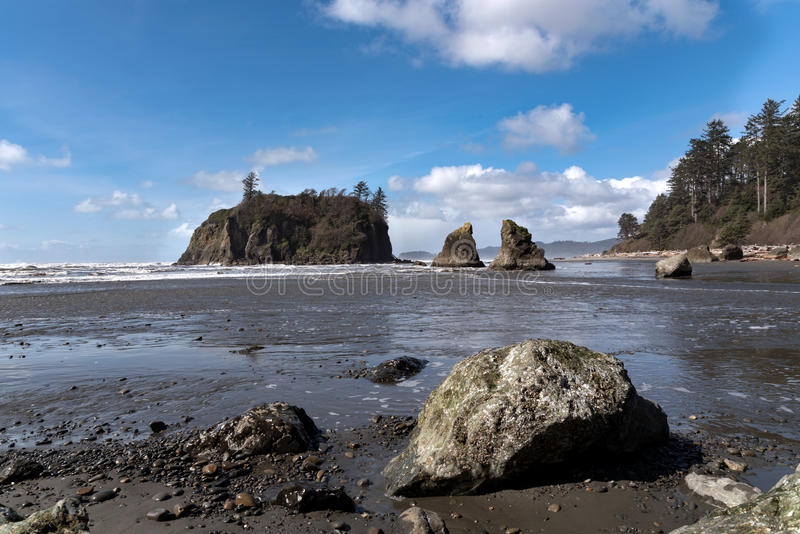 Ruby Beach royalty free stock images
