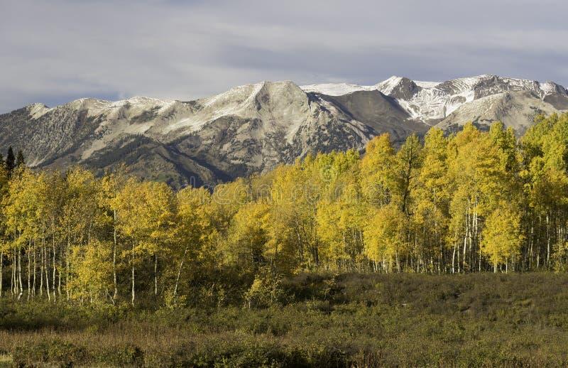 Ruby Mountain Range pela passagem Colorado de Kebler imagens de stock royalty free