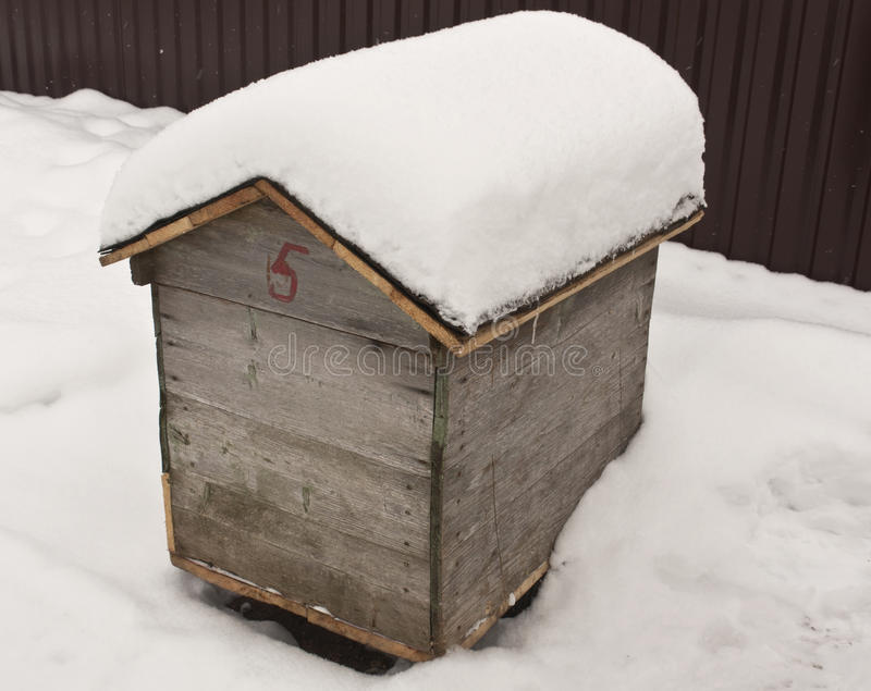 Ruche d'abeille dans la neige image stock