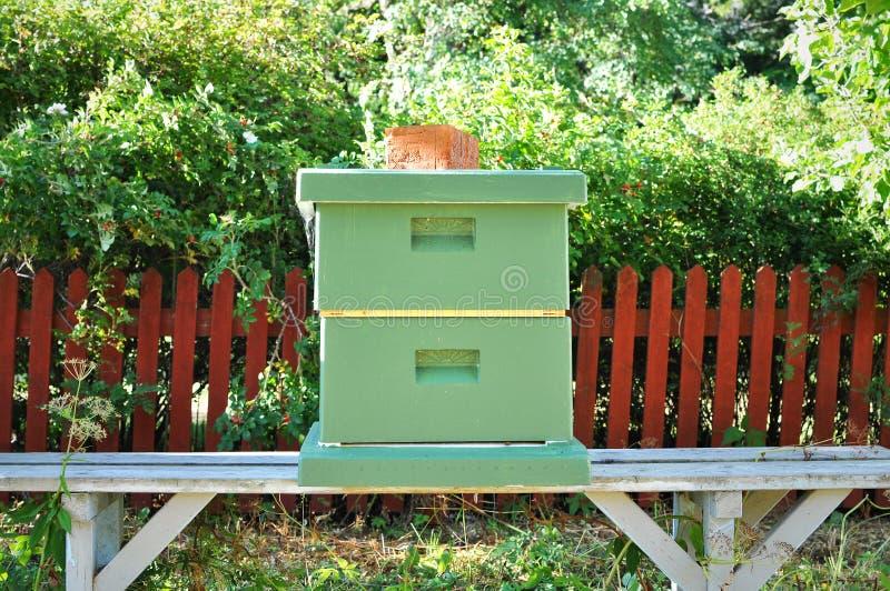Ruche d'abeille en parc photo libre de droits