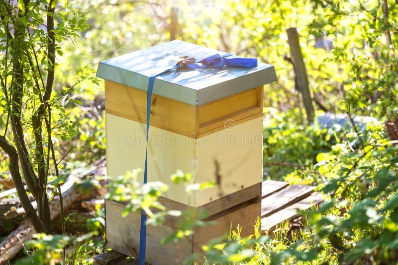 Ruche d'apiculteur en vert images libres de droits