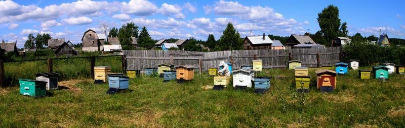 Ruches d'apiculteur dans les contrôles de rucher images libres de droits