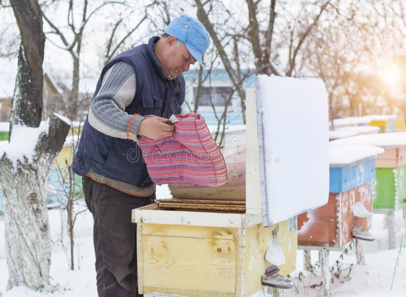Ruches d'isolation d'apiculteur avec des abeilles en hiver images stock