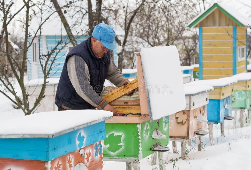 Ruches d'isolation d'apiculteur avec des abeilles en hiver photos stock