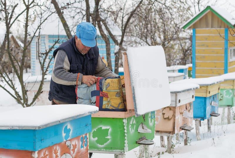 Ruches d'isolation d'apiculteur avec des abeilles en hiver photographie stock