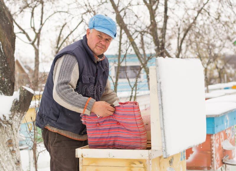 Ruches d'isolation d'apiculteur avec des abeilles en hiver photos libres de droits