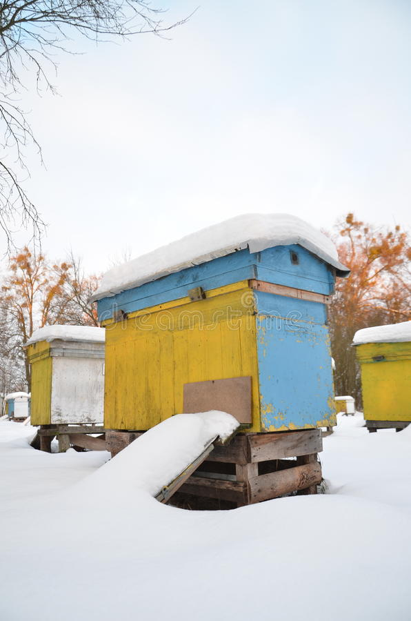 Ruches dans le rucher couvert de neige photographie stock