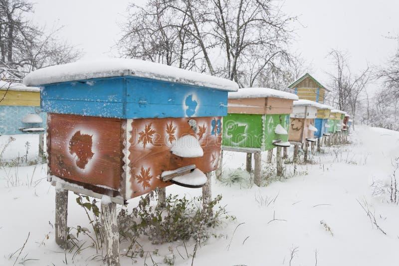 Ruches dans le rucher couvert de neige dans l'hiver photographie stock