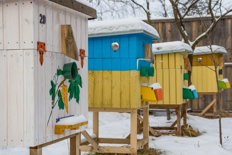 Ruches dans le rucher en hiver image libre de droits