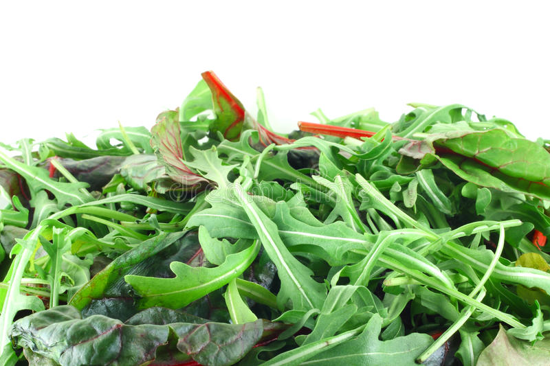 Rucola and Chard salad. Background with white copy space stock images