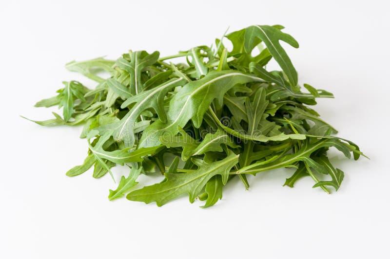 Rucola lettuce royalty free stock photos