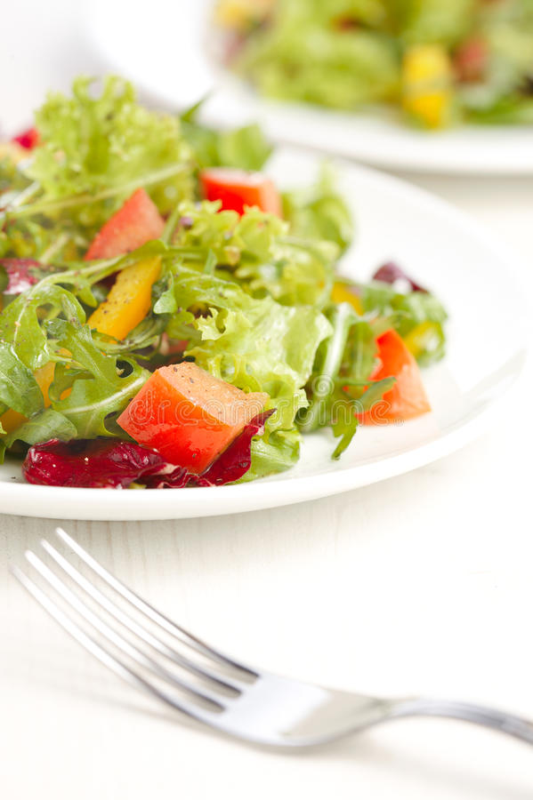 Rucola salad. On a white plate royalty free stock photos