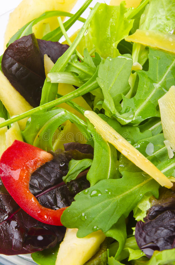 Rucola Salad. Fine-harsh and Mediterranean royalty free stock image