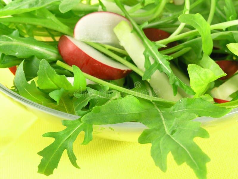 Rucola salad. Fresh rucola salad with radish and kohlrabi royalty free stock image