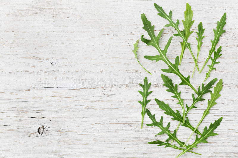 Rucola, salad rocket, rucoli, rugula, colewort, roquette or arugula on wooden rustic table. Top view royalty free stock photo