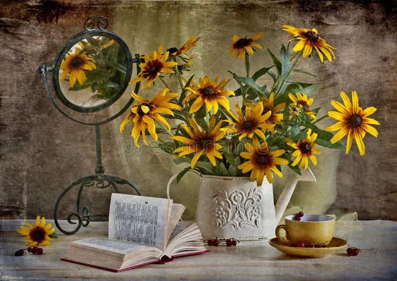 Rudbeckia photo stock image du livre miroir dur e for Miroir noir download