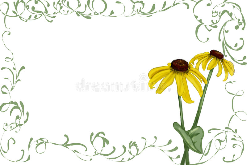 Rudbeckia with green vines stock photography