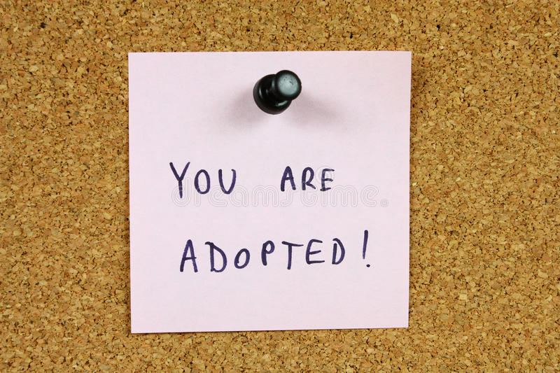 Download Rude message stock photo. Image of adoption, pedagogy - 11348494