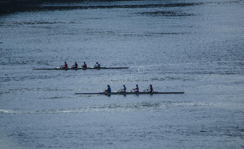 Ruderer auf dem Ottawa-Fluss lizenzfreie stockfotografie