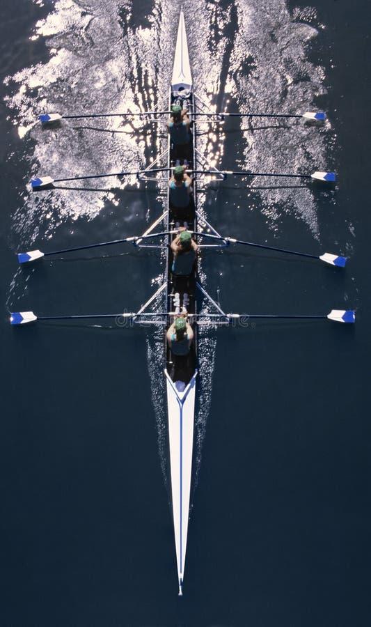 Rudersport stockfoto