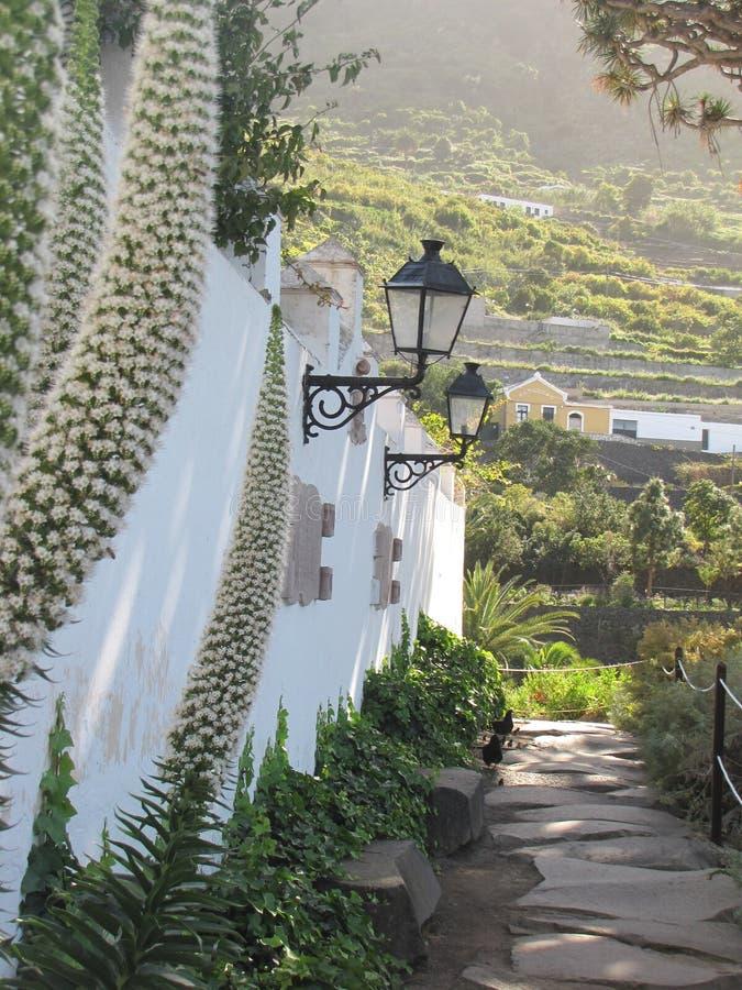 Rue ascendante avec des fleurs et des lampes dans Ténérife, Espagne photographie stock libre de droits