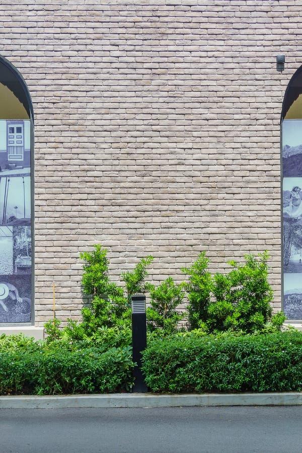 Rue avec le fond de mur de briques et l'arbre vert images stock