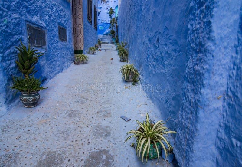 Rue bleue dans Chefchaouen images stock