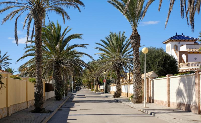 Rue bordée de paume vide de Cabo Roig Costa Blanca photo libre de droits