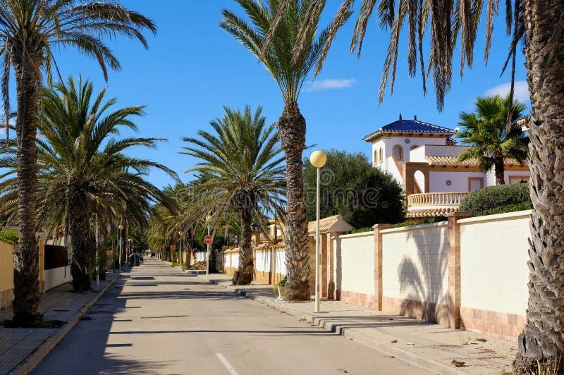 Rue bordée de paume vide de Cabo Roig Costa Blanca photo stock