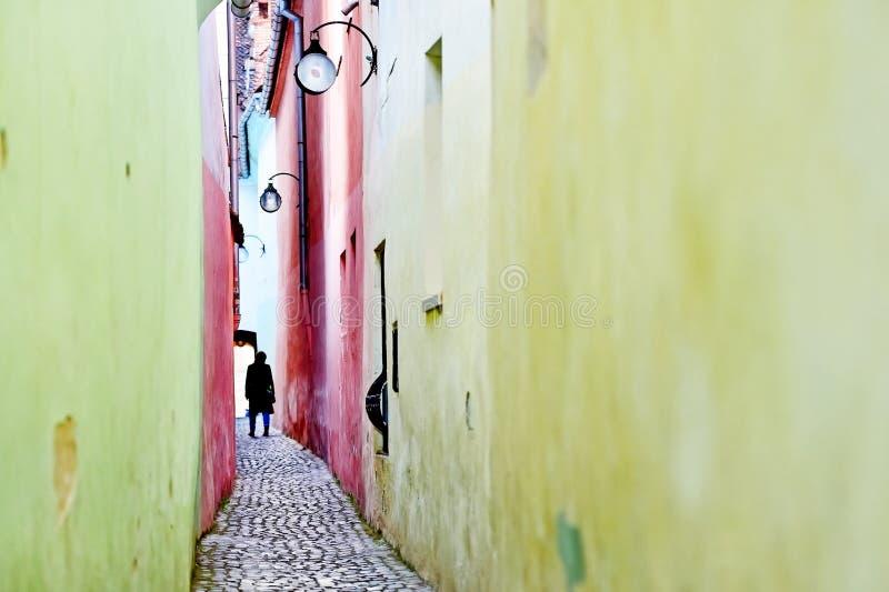 Rue célèbre de corde en vieille ville de Brasov photos libres de droits