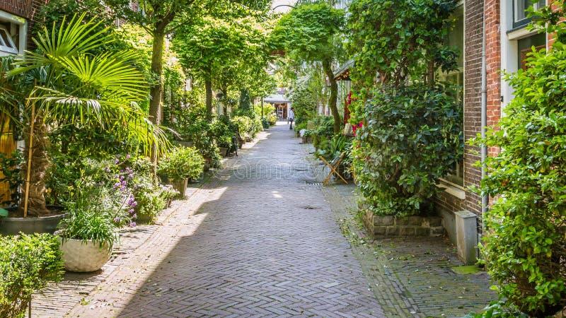 Rue confortable à Haarlem aux Pays-Bas images stock
