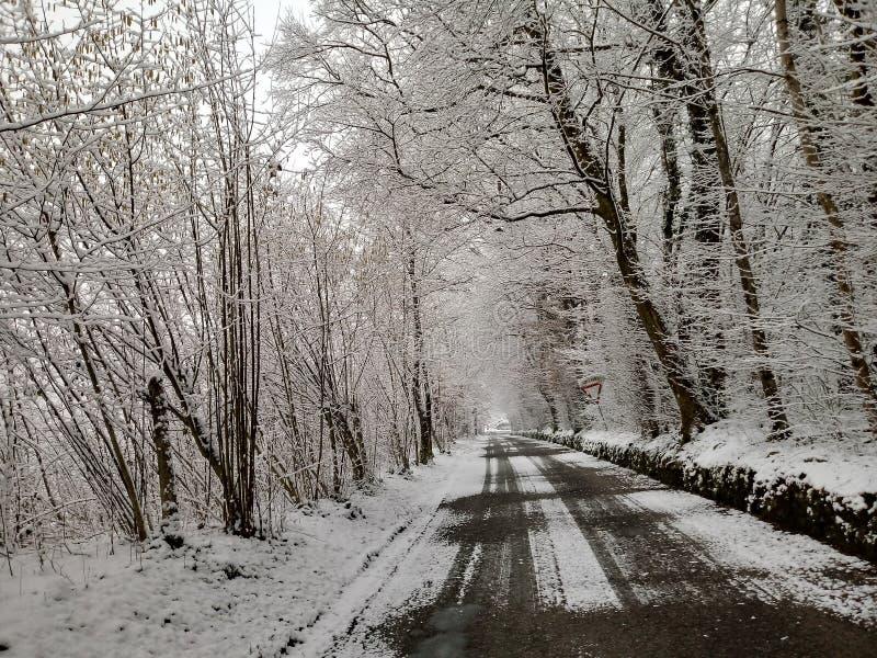 Rue d'hiver photos libres de droits