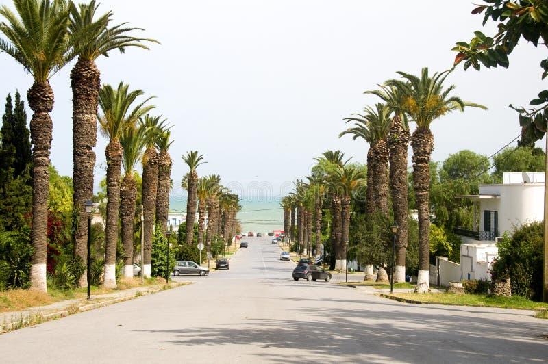 Rue Dag Hammarskjoeld Carthago Tunesië royalty-vrije stock foto's
