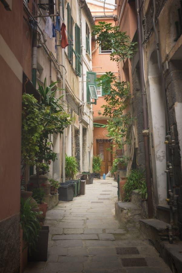 Rue dans un village italien traditionnel Manarola photo stock
