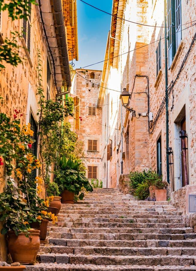 Rue de floraison de vieux village célèbre Fornalutx, Majorca Espagne photographie stock