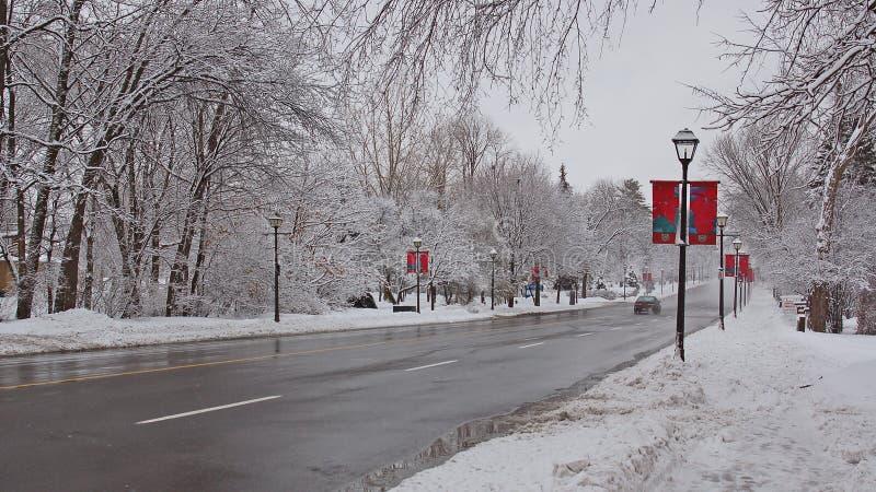 Rue de l'hiver photographie stock libre de droits
