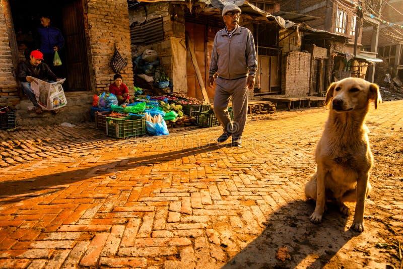 Rue du népal image libre de droits