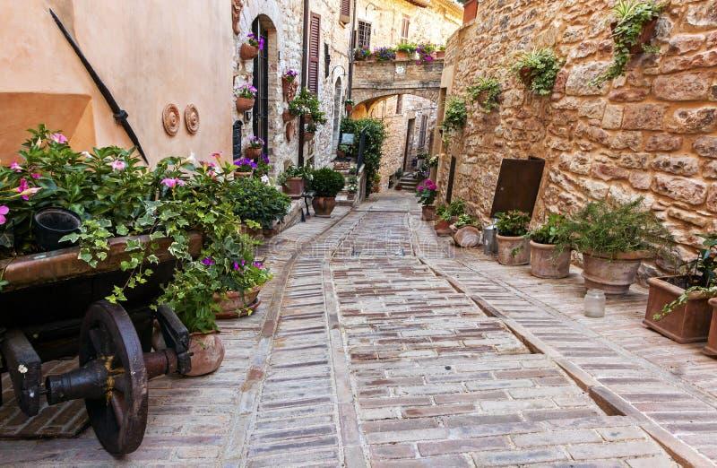 Rue florale romantique dans Spello, ville m?di?vale en Ombrie, Italie C?l?bre pour les ruelles et les balcons et les fen?tres ?tr photo stock