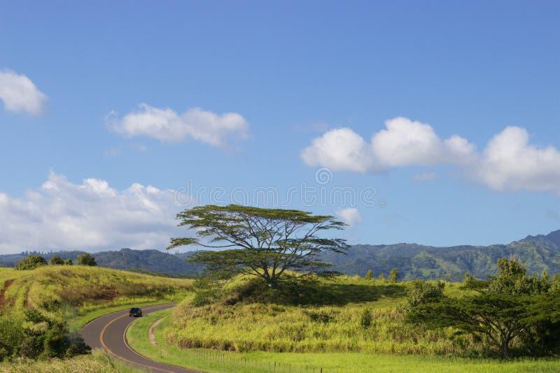 Rue Kauai d'enroulement photos stock