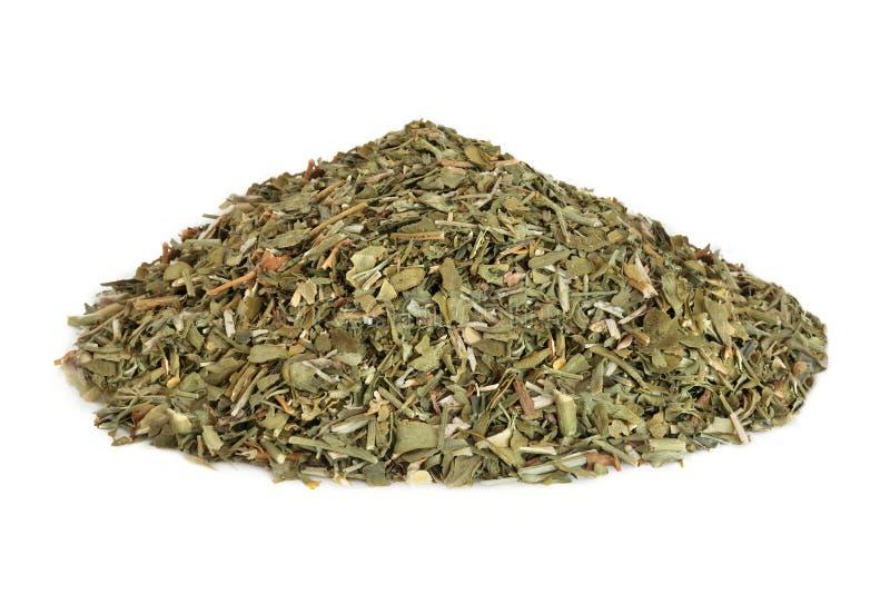 Rue Leaf Herb stock fotografie