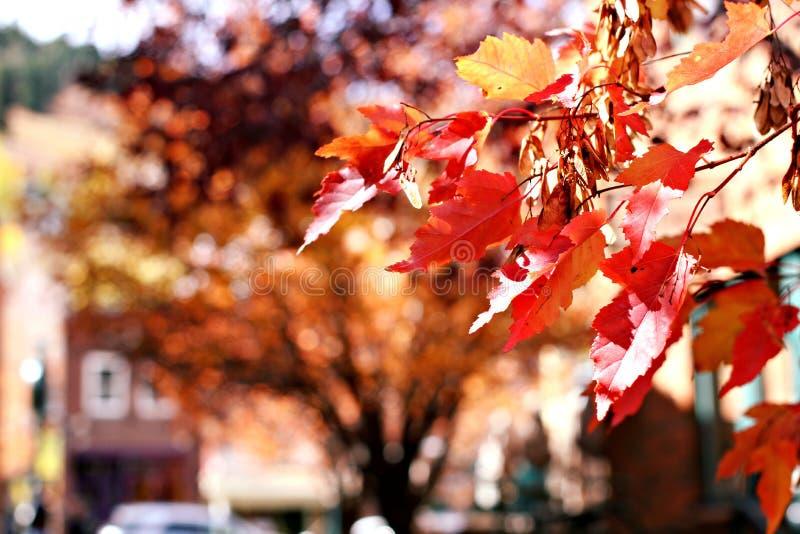 Rue principale Park City, Utah image stock