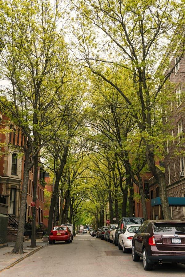 Rue résidentielle de maison urbaine de maison de grès dans Brooklyn Heights images stock