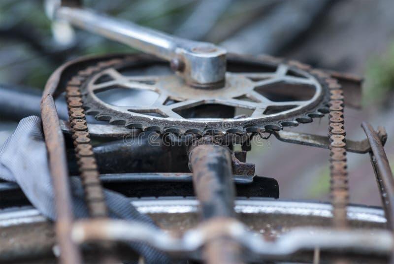 Rueda catalina de Rusty Bicycle imagen de archivo libre de regalías