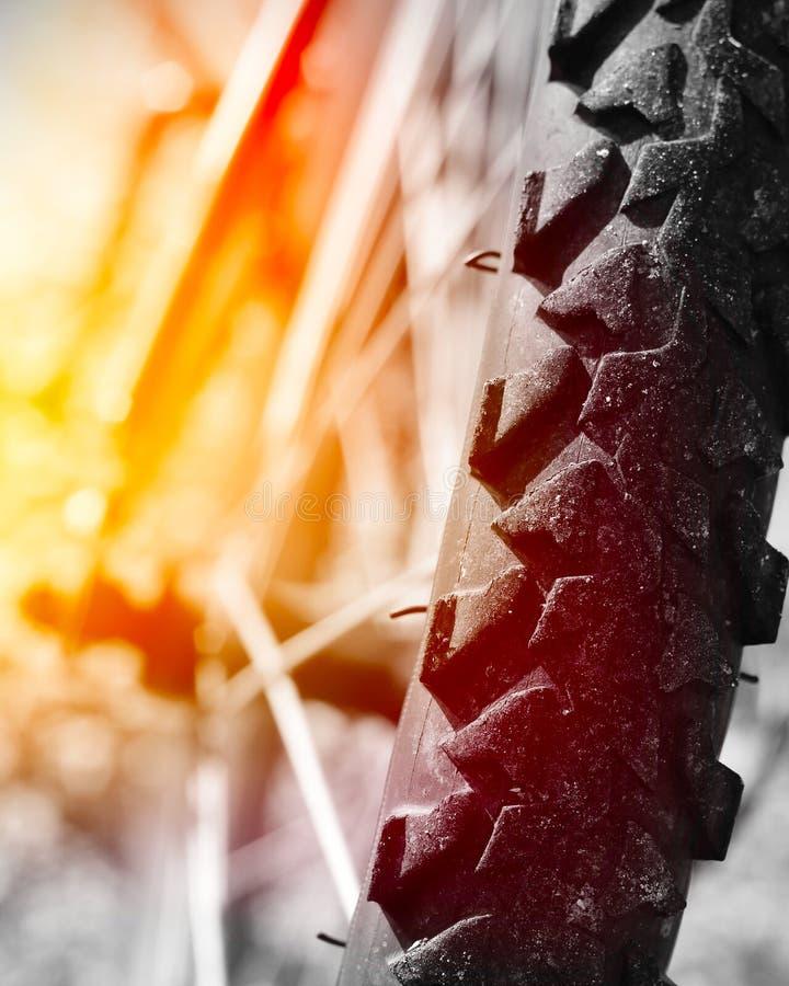 Rueda de la bici de montaña fotografía de archivo libre de regalías