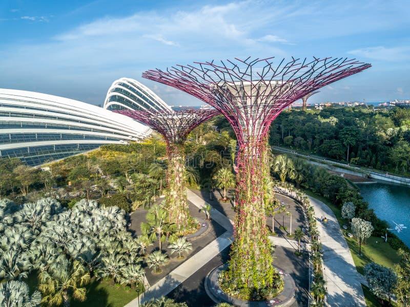 Rueda de Singapur fotos de archivo libres de regalías