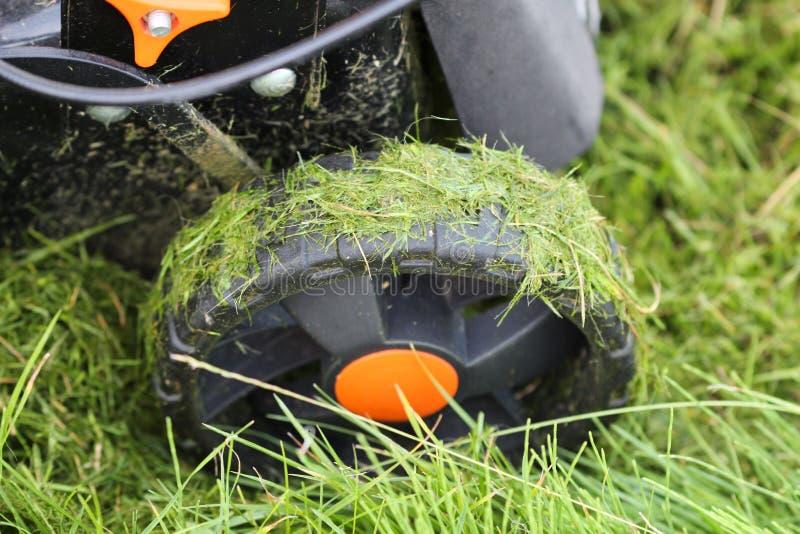 Rueda de un cortacésped después de segar la hierba fotografía de archivo