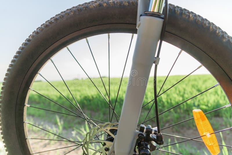 Rueda de una bicicleta en la hierba foto de archivo