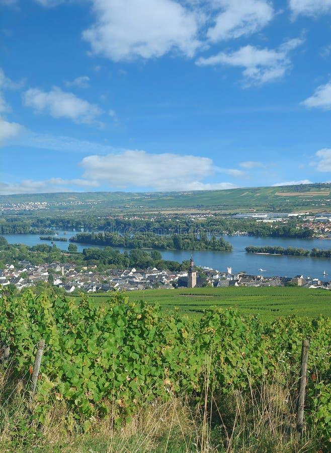 Ruedesheim AM Ρήνος σε Rheingau, Hesse, Γερμανία στοκ εικόνες