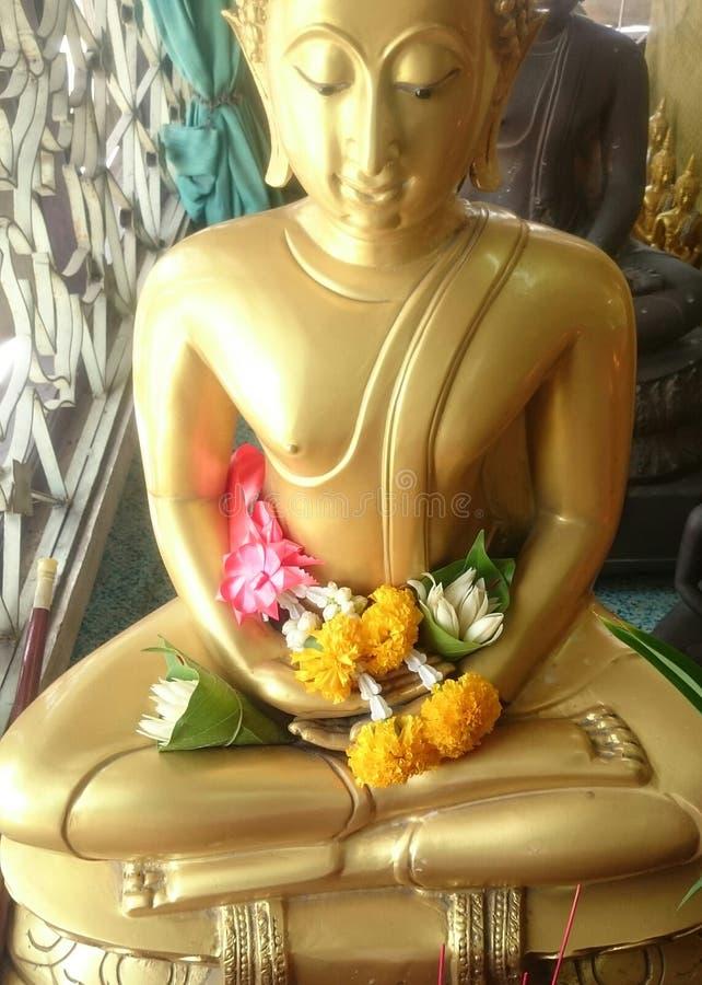Ruegue de la imagen de Buda fotografía de archivo libre de regalías