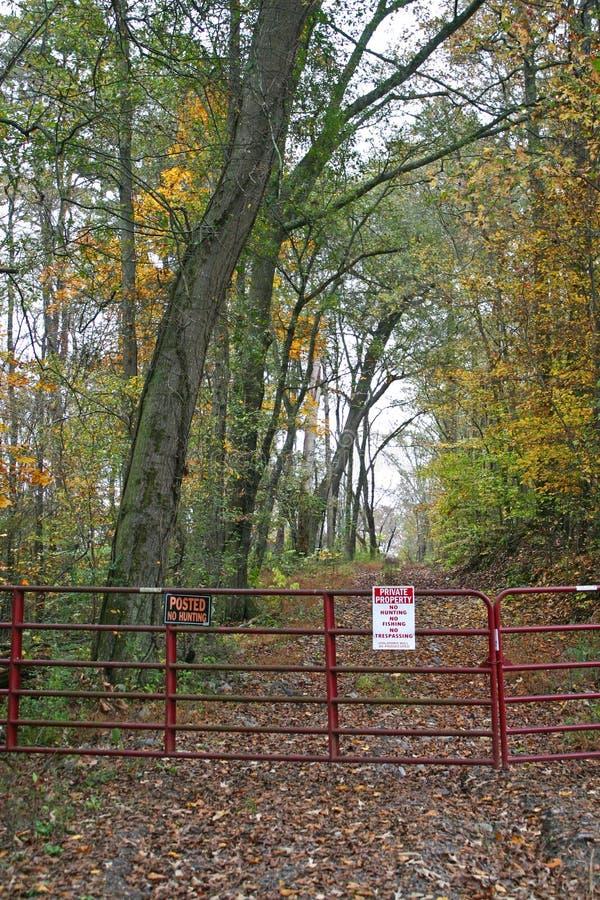 Ruelle à déchenchements périodiques en automne (vertical) photos libres de droits